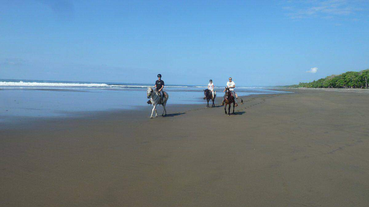 Horseback riding Playa Matapalo Costa Rica
